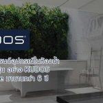 มาดูเหตุผลที่ KUDOS วางใจใช้ G Suite มานานกว่า 6 ปี