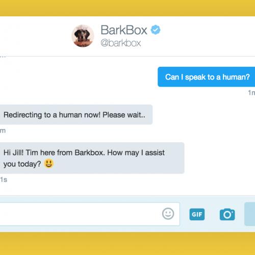 Zendesk partners with BarkBox3
